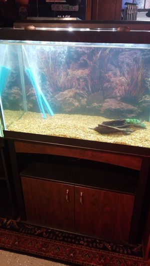 Mint 65 Gallon Aquarium Hood Tank Stand Filter Complete setup for Sale in Waterbury, CT