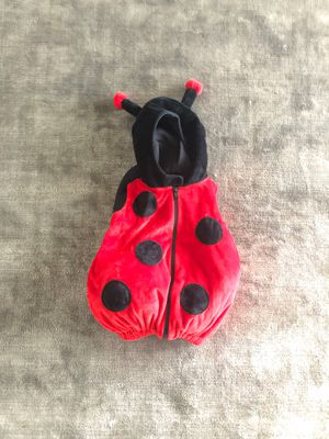 Ladybug costume / size 12 months for Sale in Vienna, VA