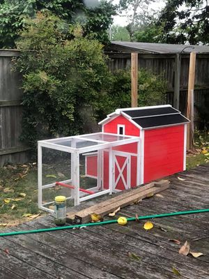Chickens, coop and supplies for Sale in Norfolk, VA