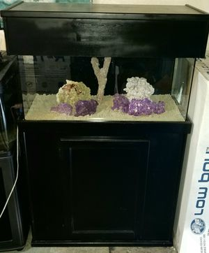 FISH TANK (READY TO SALTWATER REEF TANK) for Sale in Lake Forest, CA