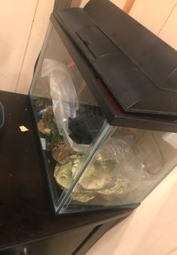 Fish tank for Sale in Charlotte,  NC