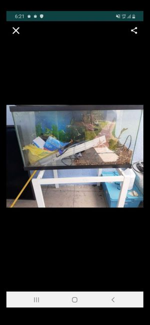 Aquarium Tank with everything included filter, lights, thermostat etc.. for Sale in Pembroke Park, FL