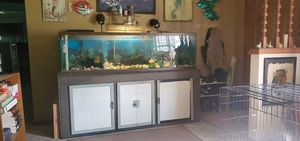 Fish tank for Sale in Inverness, FL