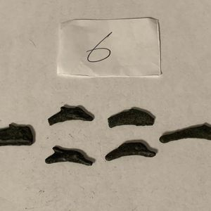 Ancient Greece Coins Lot Of 6 Olbia Dolphin 5th Century BC Bronze (6) for Sale in Modesto, CA