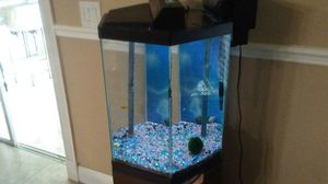 30 gallon aquarium with stand for Sale in Lutz, FL