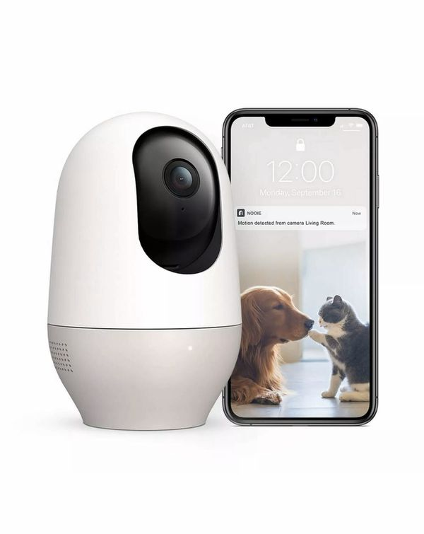Nooie cam pet monitor dog cat 360 noise alert microphone night vision 1080 WiFi ip camera