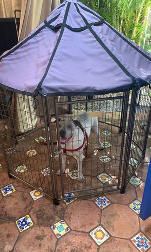 Dog Kennel w/ Roof for Sale in Miami, FL