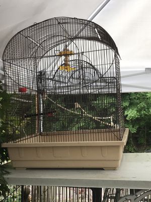 Medium cage for Sale in Pittsburgh, PA