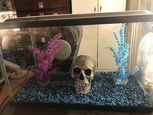 aquarium 10 gallon for Sale in Manassas, VA