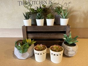Realistic looking succulents for Sale in Palmdale, CA