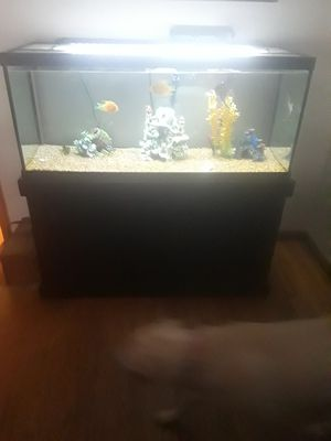 75 Gallon Fish Tank for Sale in Knoxville, TN