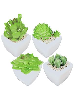 Artificial Succulent Plants for Sale in Plano, TX