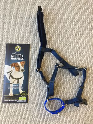 Dog Harness and Leash for Sale in Ashburn, VA