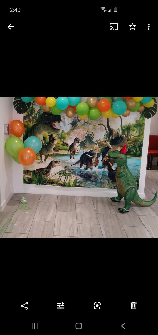 Dino party stuff