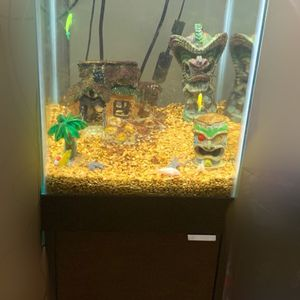 Fish Tank for Sale in The Bronx, NY