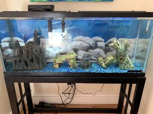 50 gallon tank/ with pump and stand /led lighted hood for Sale in Rye, NH
