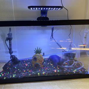 10 Gallon Glow In The Dark Fish Tank for Sale in Pasadena, CA