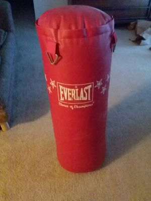50 pound everlast punching bag for Sale in Saginaw, MI
