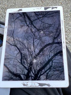 iPad Pro for Sale in Nashville, TN