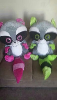 Stuffed animal raccoons for Sale in Pickerington, OH