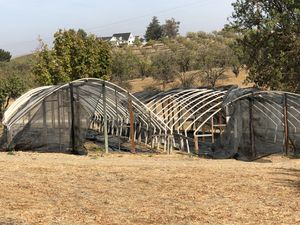 Free hoop houses. Come and get one or get them all for Sale in Templeton, CA