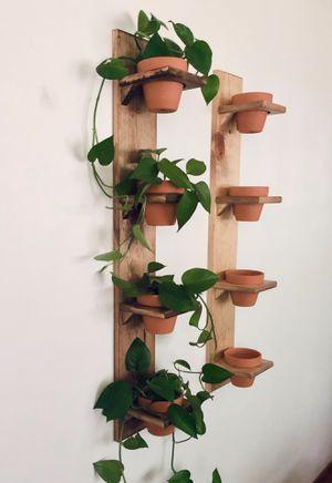 Plant Pot Shelf for Sale in Andover, KS