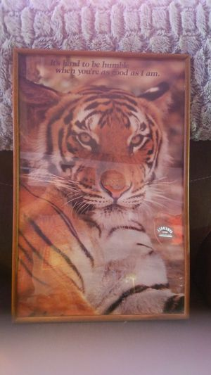 TIGER PICTURE for Sale in Waterbury, CT