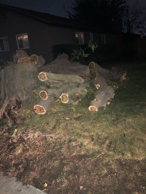 Free wood for Sale in Manteca, CA