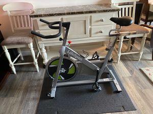 LifeSpan Spinning bike with floor mat for Sale in Alexandria, VA