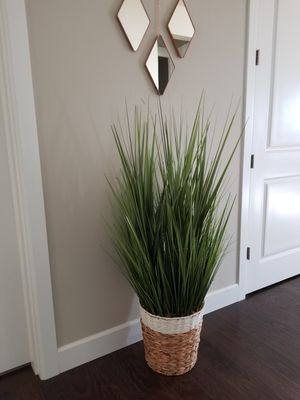 Rustic & Clean Fake Plant: ~ 4ft High, ~2ft Wide for Sale in Gig Harbor, WA