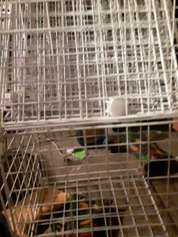 Interlocking Wire Shelves for Sale in Puyallup,  WA