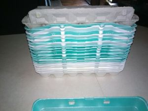 Free Egg Cartons for Sale in Biloxi, MS