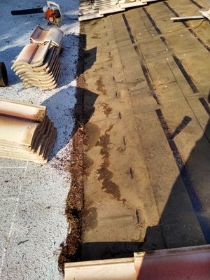 You need a Roofer for Sale in Gilbert, AZ