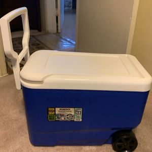 Igloo Cooler for Sale in Vernon, CA