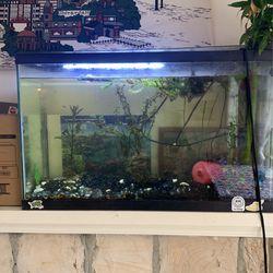 Fish Tank 45 Gal for Sale in Santa Cruz,  CA