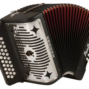 Panther Accordion for Sale in Escondido, CA