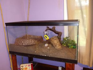 40 gal reptile tank with supplies for Sale in Greenville, SC