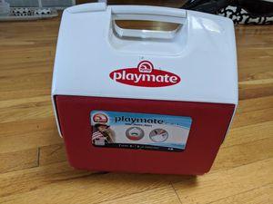 Igloo cooler for Sale in Denver, CO