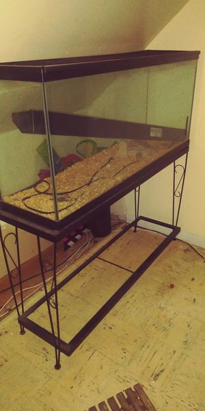Large tank (includes light and stand) for Sale in Hartford, CT