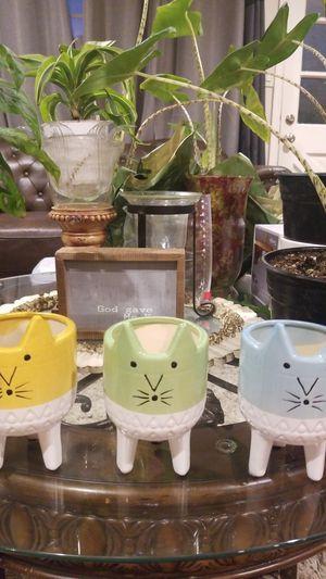 Cat pot for Sale in Orange, CA