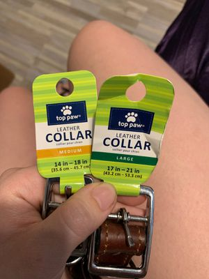 Dog Collars for Sale in Hemet, CA