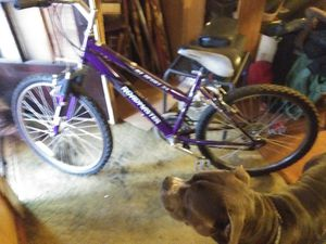 Road master mountain bike for Sale in Cuyahoga Heights, OH