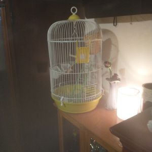 Bird Cage. for Sale in Sacramento, CA