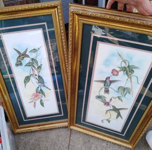 Hummingbird pics for Sale in Prairieville, LA