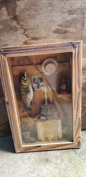 Fishing shadow box for Sale in Burlington, WA