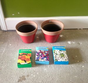 2 new flower pots & packs of feed for Sale in Brandon, MS