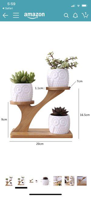 White creative Mini plant pot treetop bamboo frame for Sale in Moreno Valley, CA