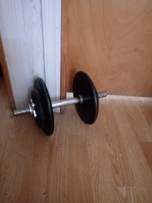 Golds gym weight plates and bar for Sale in Allentown, PA