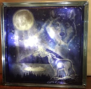 Wolf for Sale in IL, US