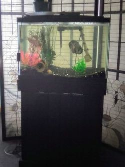 Fish Tank Fish Aquarium With Storage Base for Sale in Chicago,  IL